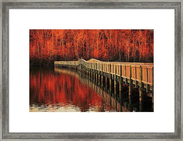Winter Reds Framed Print