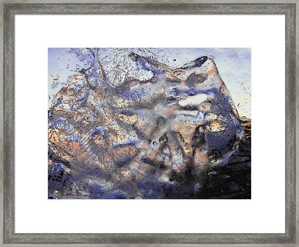 Winter Remains Framed Print