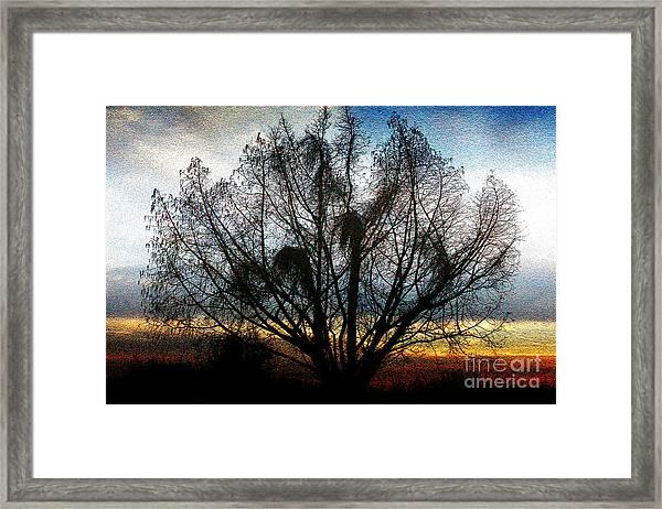Winter Revelations Framed Print