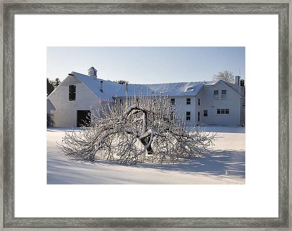 Winter Sculpture Framed Print