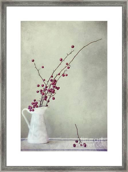 Winter Still Life Framed Print
