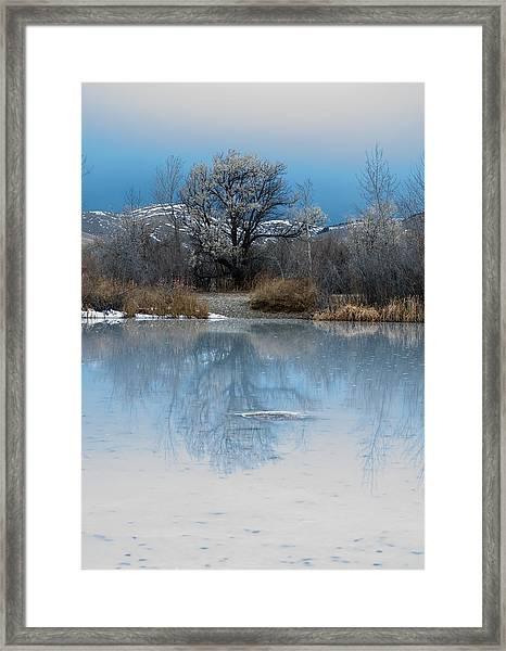 Winter Taking Hold Framed Print