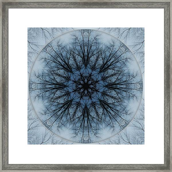 Framed Print featuring the photograph Winter Tree Mandala 2 by Beth Sawickie