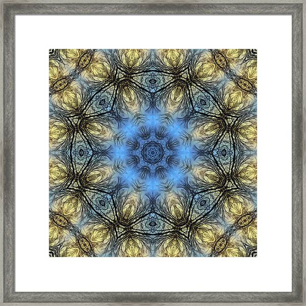 Framed Print featuring the photograph Winter Tree Mandala by Beth Sawickie
