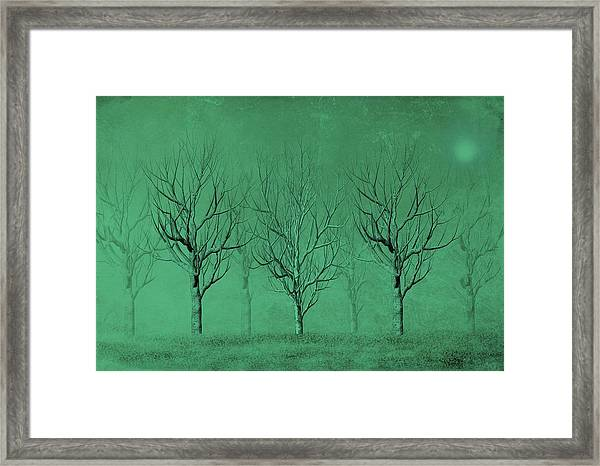 Framed Print featuring the digital art Winter Trees In The Mist by David Dehner