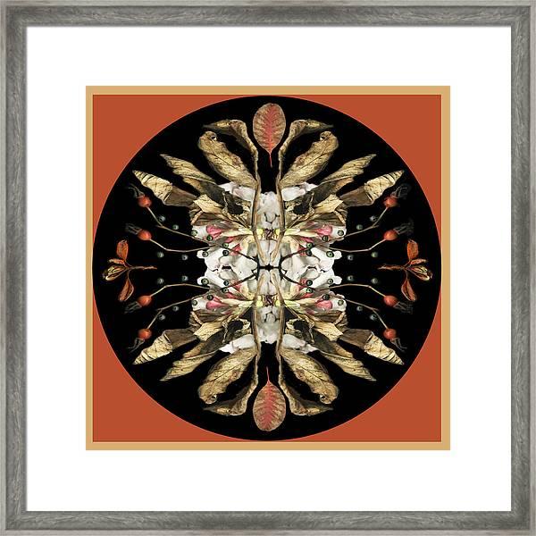 Winter Viburnum Framed Print