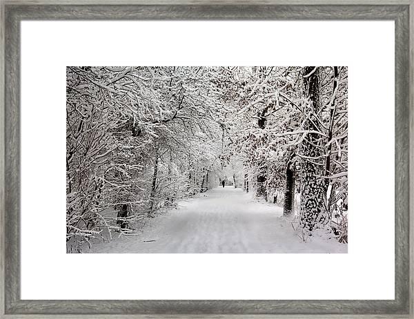 Winter Walk In Fairytale  Framed Print