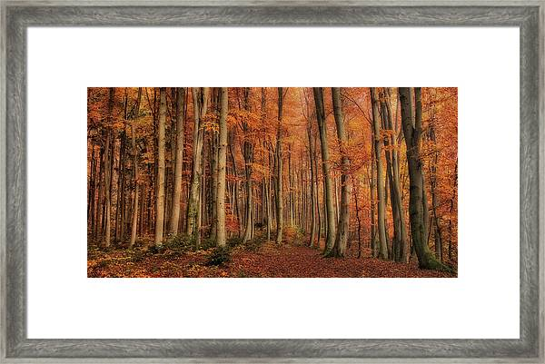 Winter\'s Soon To Come Framed Print by Norbert Maier