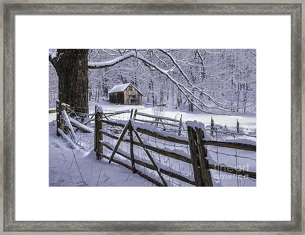Winter's Mystique   Framed Print