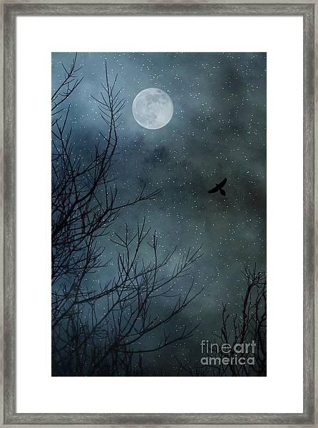 Winter's Silence Framed Print