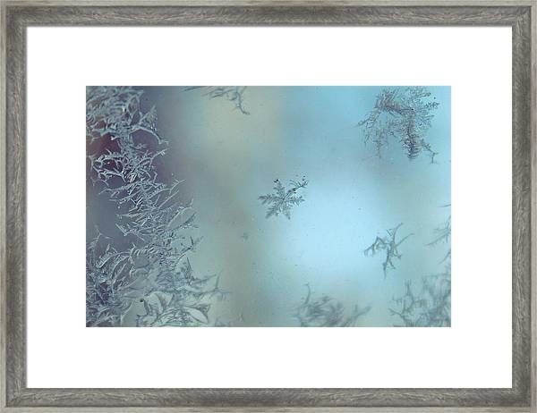 Framed Print featuring the photograph Winter's Sketch by Candice Trimble
