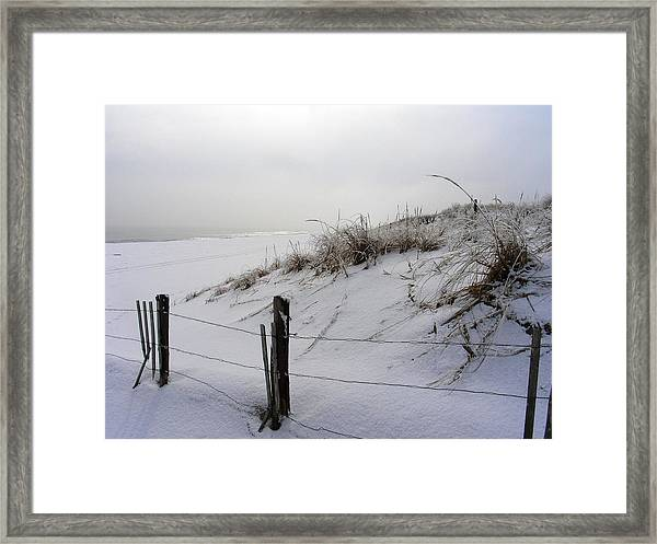 Winters Snow At Island Beach State Park Framed Print by Vincent DeLucia