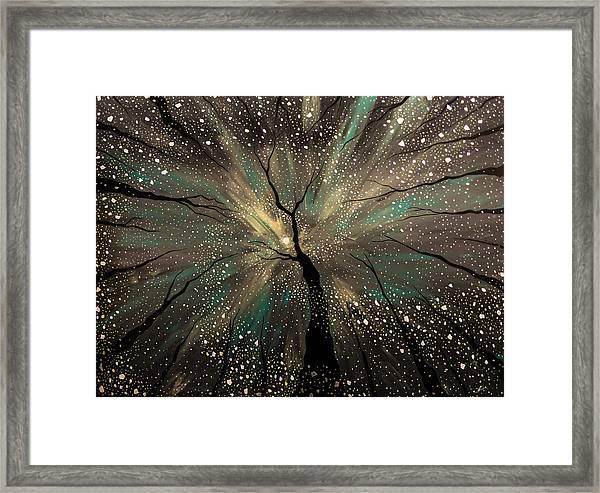 Winter's Trance Framed Print