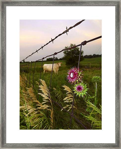 Wisconsin Evening Framed Print