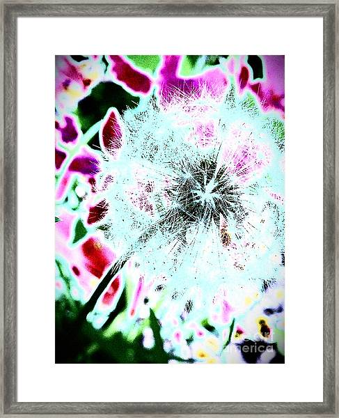 If Wishes Were Horses Framed Print