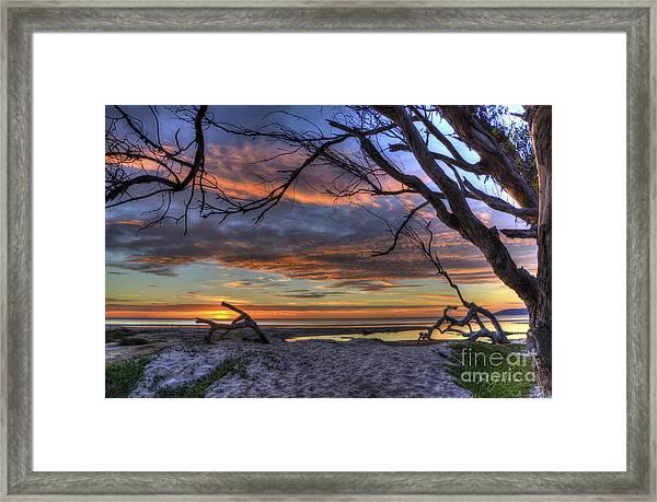 Wishing Branch Sunset Framed Print
