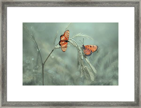 With You Framed Print by Edy Pamungkas