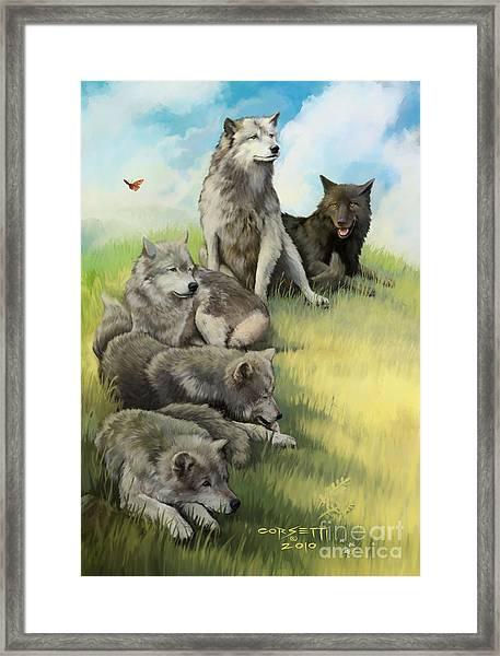 Wolf Gathering Lazy Framed Print