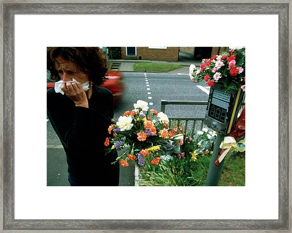 Woman Mourns A Road Kill Framed Print by Jim Varney/science Photo Library