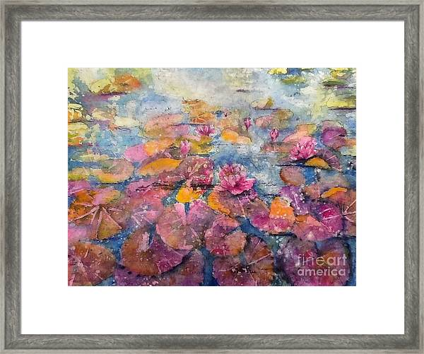 Wonderland Waterlilies Framed Print