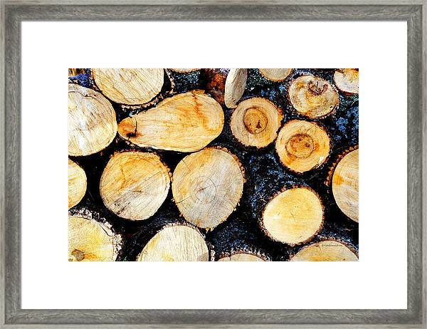 Wood Pile Framed Print