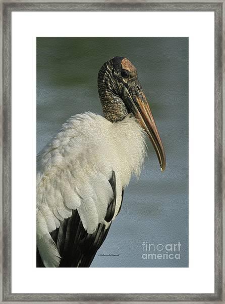 Wood Stork In Oil Framed Print