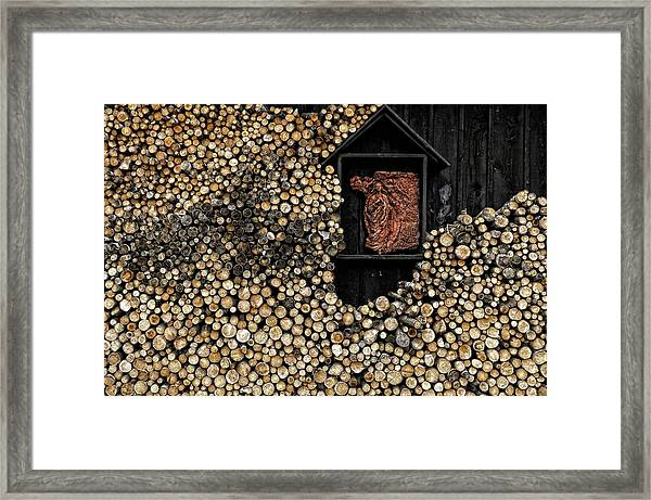 Wooden Madonna Framed Print