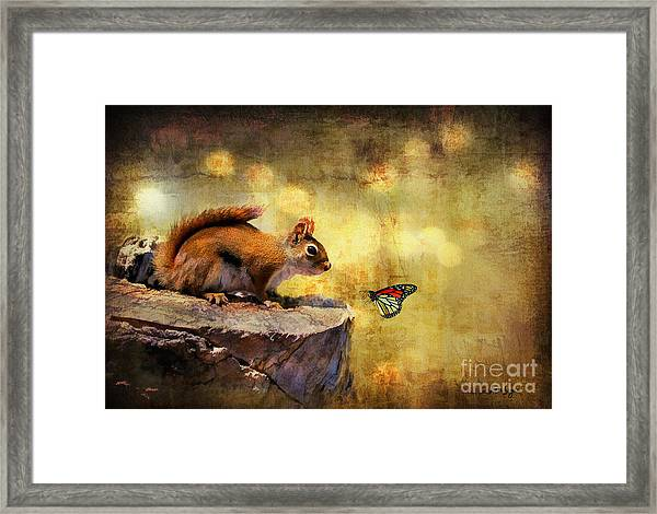 Framed Print featuring the photograph Woodland Wonder by Lois Bryan