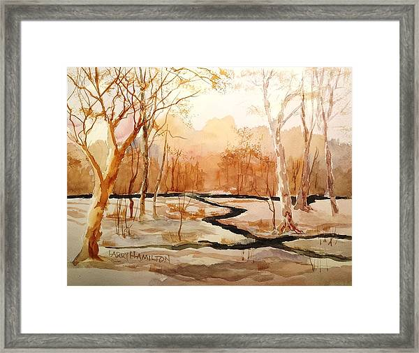 Woods By The Reservoir Framed Print