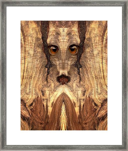 Woody #12 Framed Print