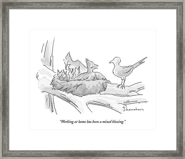 Working At Home Has Been A Mixed Blessing Framed Print