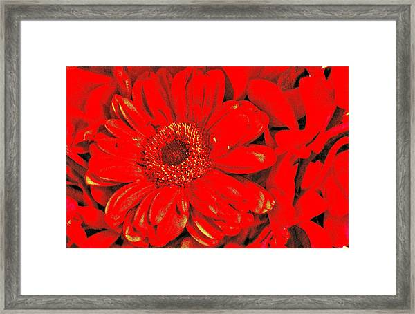 Wow Red Framed Print