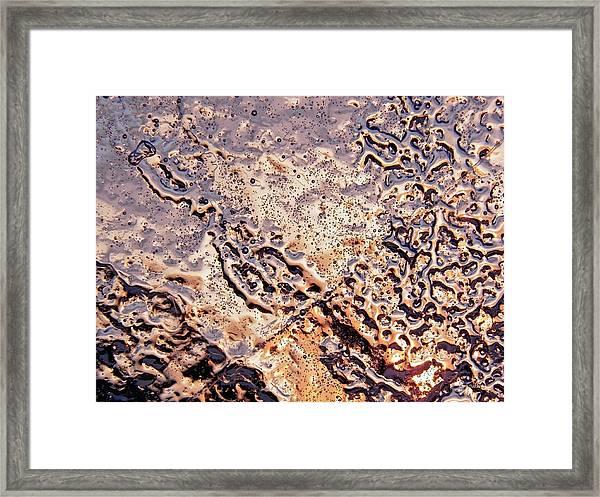 Wrinkled Beauty Framed Print