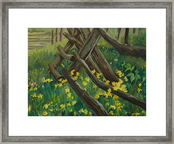 Wyoming Summer Framed Print