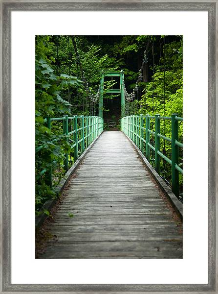 Yagen Forest Bridge Framed Print