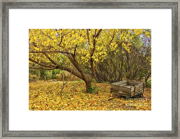 Yellow Autumn Leaves And Wooden Wagon Framed Print
