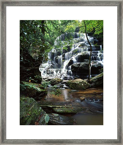 Yellow Branch Falls Framed Print