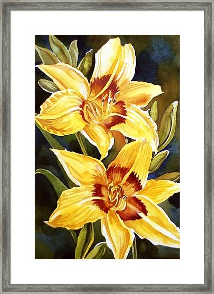 Yellow Daylilies Framed Print