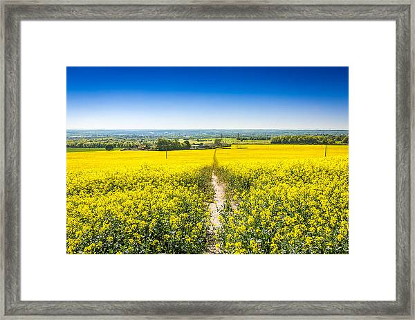 Yellow Fields. Framed Print