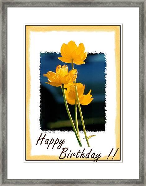 Yellow Flower 1 Framed Print