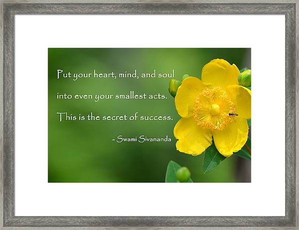Framed Print featuring the photograph Yellow Flower With Success Quote by Beth Sawickie