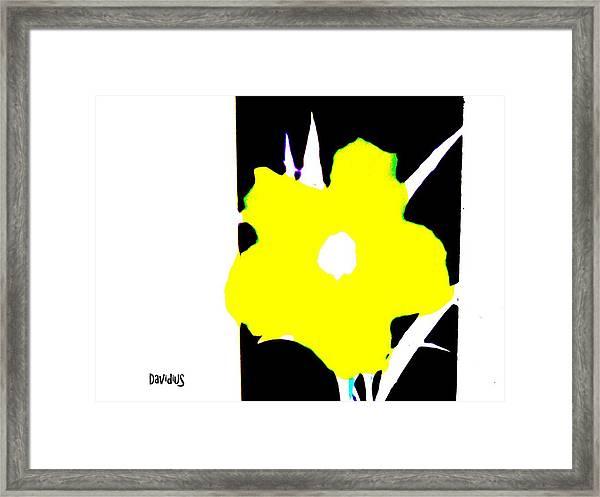 Yellow Jack W Logo Framed Print