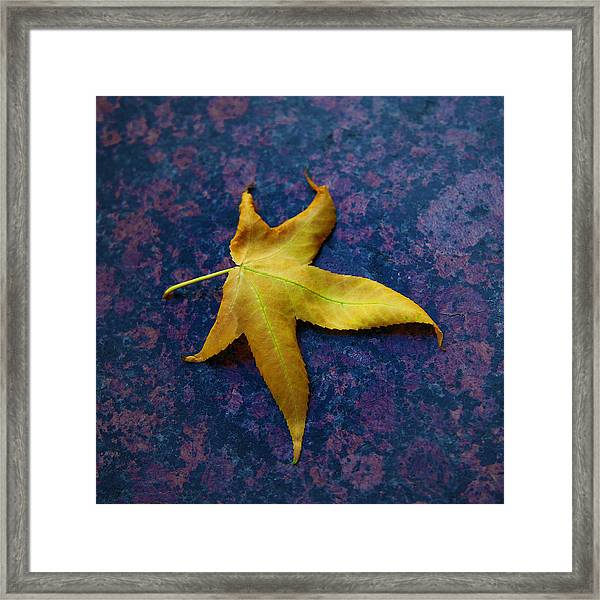 Yellow Leaf On Marble Framed Print