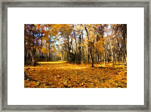 Framed Print featuring the photograph Yellow Leaf Road by William Jobes