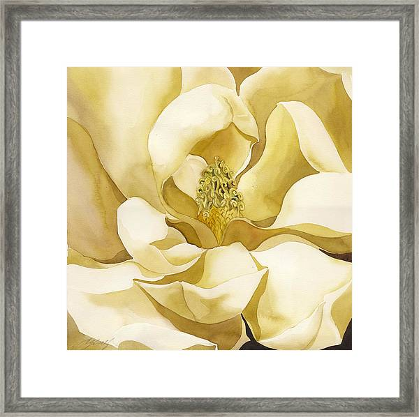 Yellow Magnolia Framed Print