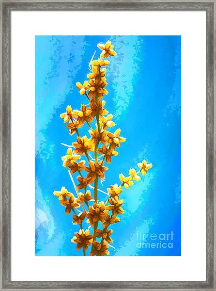 Yellow Plant Framed Print