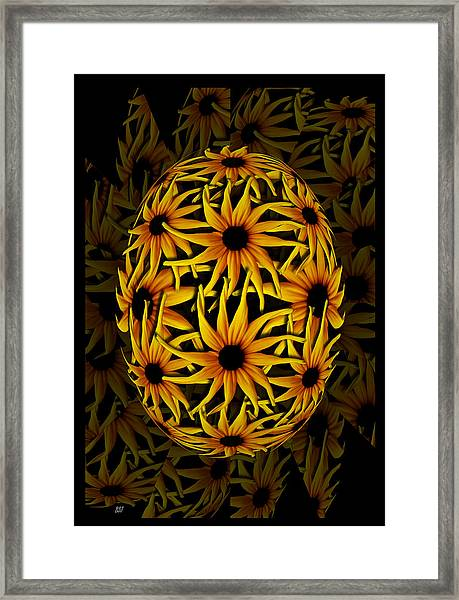 Yellow Sunflower Seed Framed Print