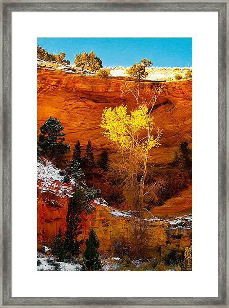 Yellow Tree Framed Print