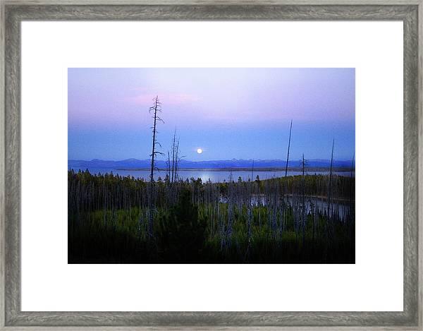 Yellowstone Moon Framed Print