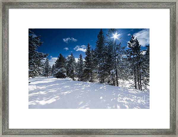 Yellowstone Sunshine Framed Print